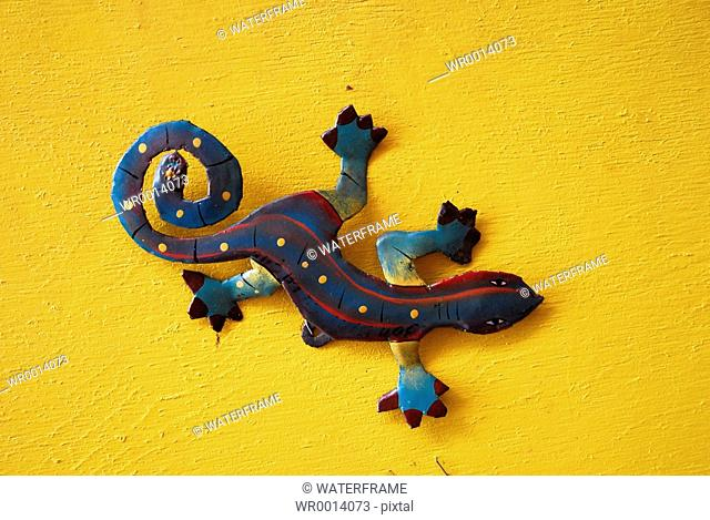 Colorfully Gecko, Caribbean Sea, Netherland Antilles, Curacao