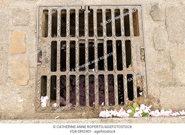 May blossom petals blown into a large street drain, with metal grill mouldings matching the form of the petals, Cambrai, France