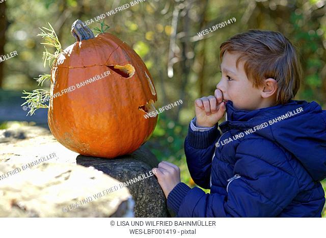 Boy examining Halloween pumpkin in forest