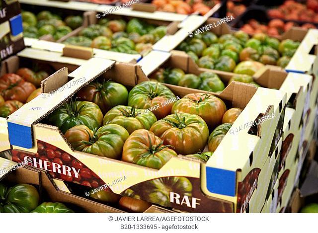 Tomatoes, Mercabilbao fruits and vegetables wholesale market, Basauri, Bilbao, Bizkaia, Euskadi, Spain