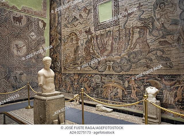Algeria, Djemila City, Roman ruins of Djemila City, UNESCO, W. H. Djemilla Archeological Museum, Roman Mosaics