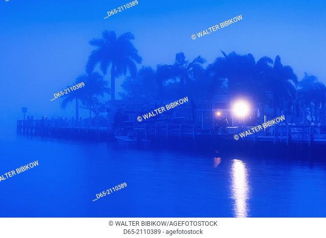 USA, Florida, Everglades National Park, Everglades City, morning fog