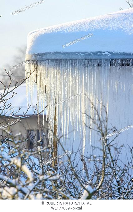 The roof of a house covered with snow and icicles. Icicles hanging from roof. Winter in Latvia. White snow on the roof and icicles hanging from a slate roof