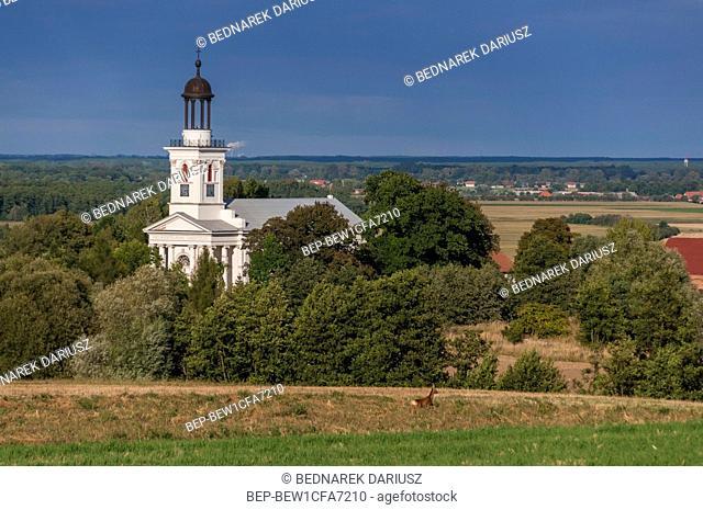 Brzostkow, village in Greater Poland Voivodeship