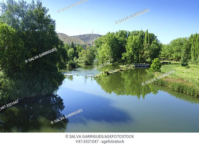 Riverbank of the Douro River as it passes through Soria