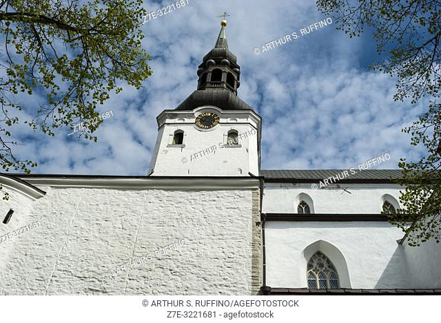 St. Mary's Cathedral (Dome Church), (Toomkirik), Toompea Hill, Tallinn, Estonia, Baltic States