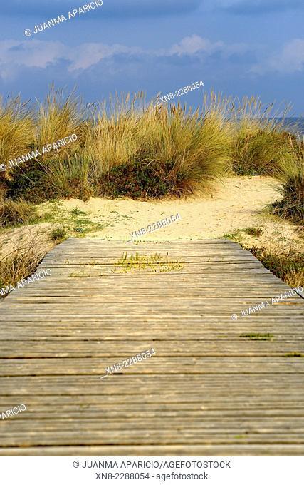 Berria Beach in Santoña, Cantabria, Spain, Europe
