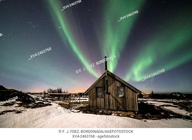 Aurora borealis above wooden house by Night, Iceland