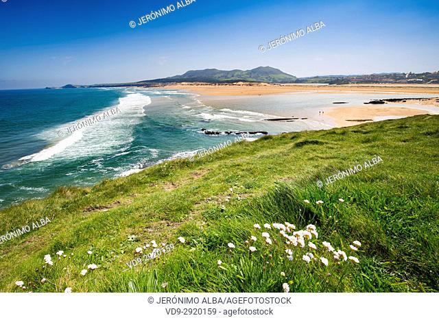 Field of fresh green grass and Valdearenas beach. Liencres Natural Park. Cantabrian Sea. Santander, Cantabria Spain. Europe