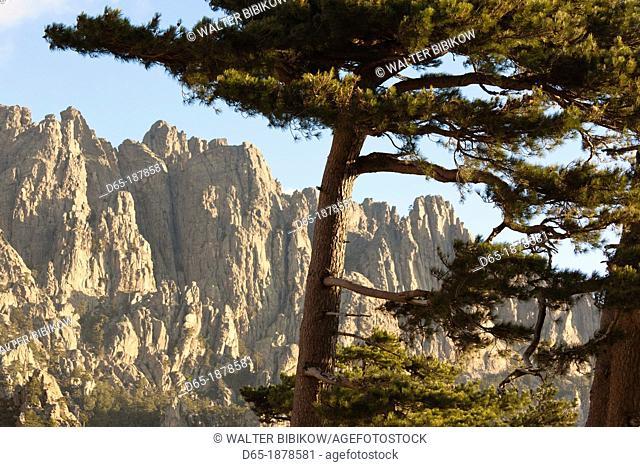 France, Corsica, Corse-du-Sud Department, La Alta Rocca Region, Col de Bavella pass, Aiguilles de Bavella peaks, morning