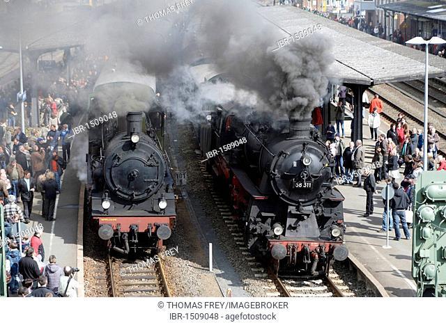 Dampfspektakel 2010 steam train show at Gerolstein station, passenger train engine 2455 Posen, left, with freight train engine 58311, right, Gerolstein