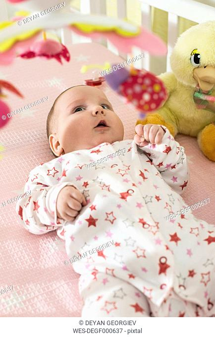 Baby girl lying in a baby cot looking at mobile