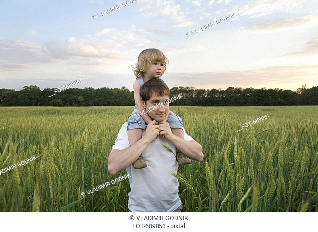 A man carrying a child on his shoulders through a wheat field