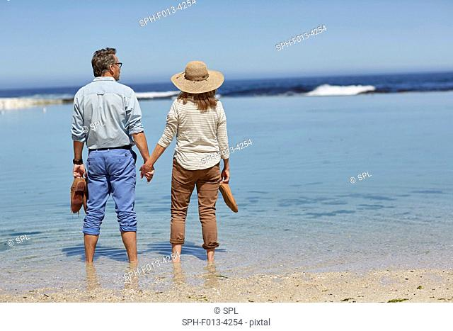 MODEL RELEASED. Senior couple holding hands, paddling in the sea