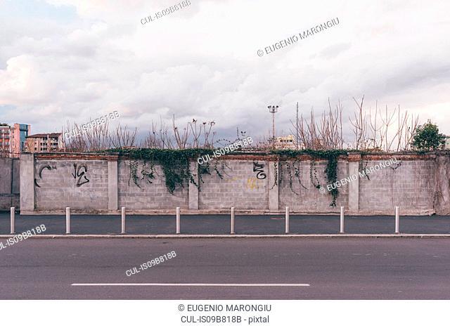 Graffiti on wall beside deserted road