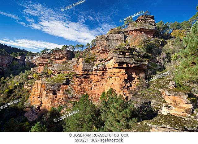 River Gallo Canyon in Guadalajara. Castilla la Mancha. Spain. Europe