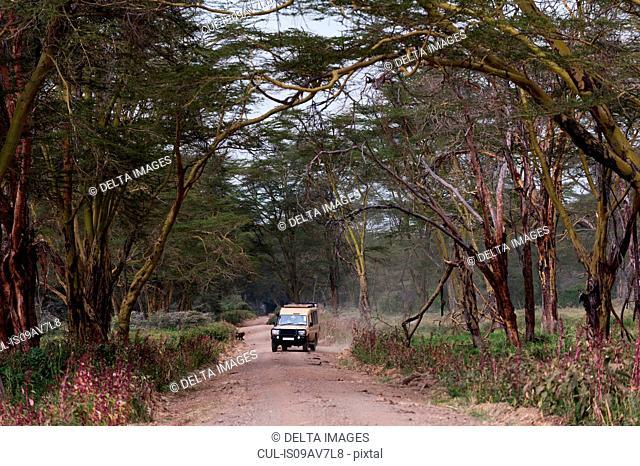 Safari vehicle, Lake Nakuru National Park, Kenya