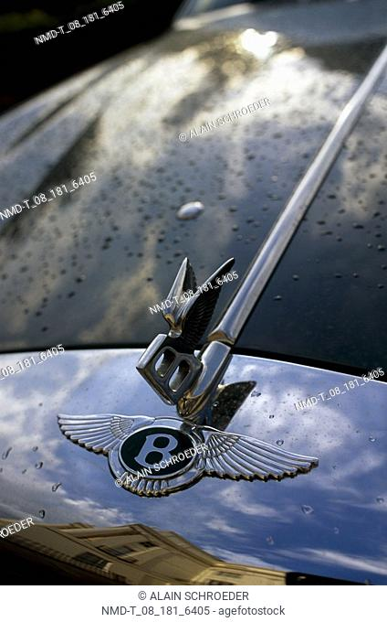 Close-up of hood ornaments on the bonnet of a car, London, England