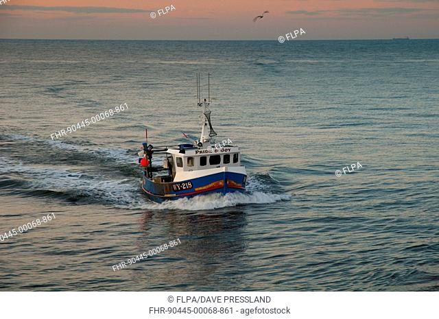Small crab and lobster fishing boat 'Pride and Joy WY 218' returning to port at dusk, Whitby, North Yorkshire, England, March