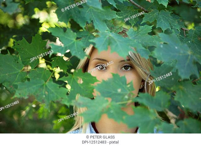 A teenage girl with blond hair and brown eyes standing in the foliage of a tree with her face obscured by leaves; Connecticut, United States of America