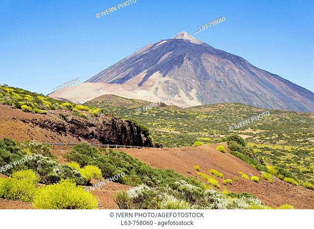 Mount Teide, Las Cañadas del Teide National Park. Tenerife, Canary Islands, Spain
