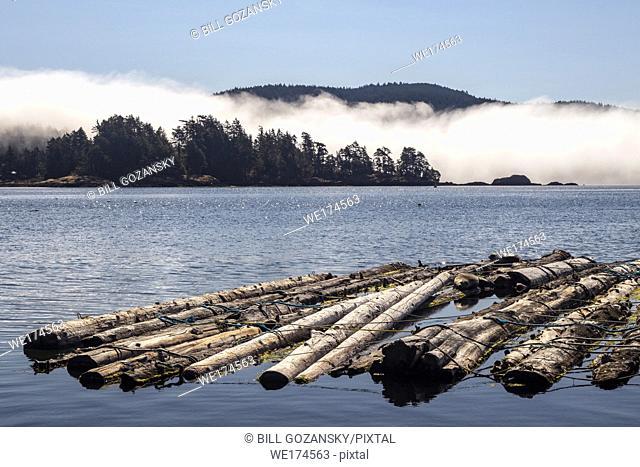 Timber raft in Sooke Harbour - Sooke, Vancouver Island, British Columbia, Canada