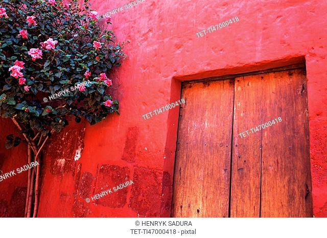 Red wall and doors of Monastery Santa Catalina