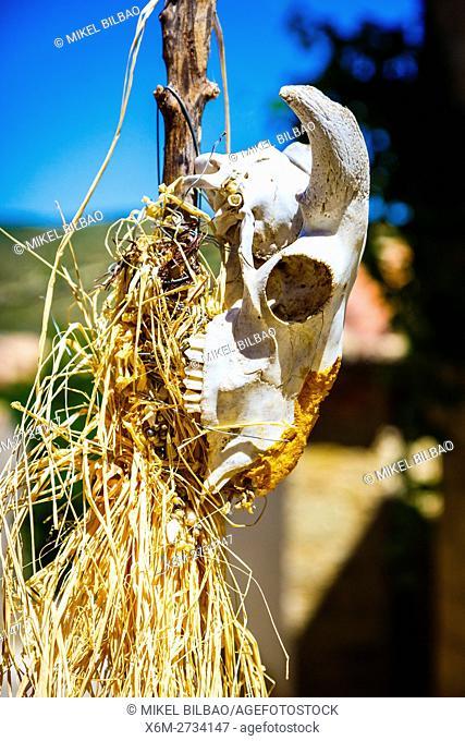 Animal bones. Witchery Week 2016. Bargota, Navarre, Spain, Europe