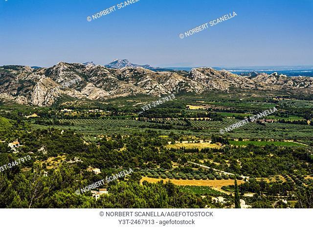 Europe. France. Bouches-du-Rhone. Alpilles hills. Regional park of the Alpilles