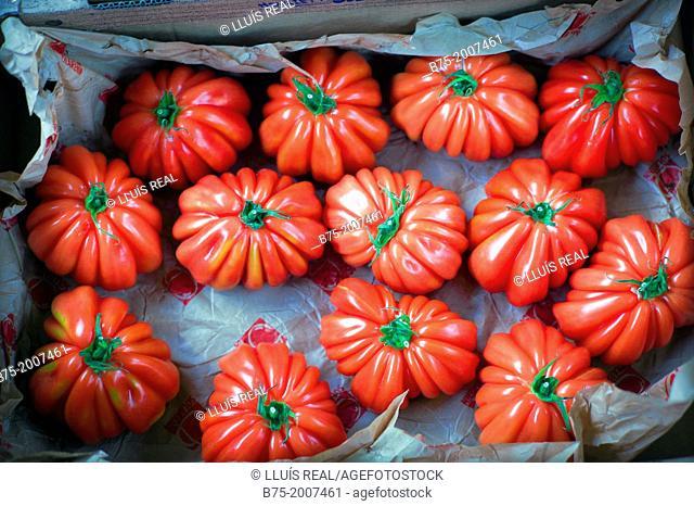 Raf tomatoes Box