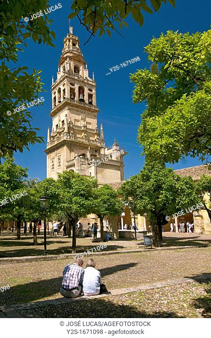 Cathedral, Old arab mosque, Tower and «patio de los naranjos», Cordoba, Region of Andalusia, Spain, Europe