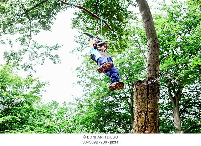 Young boy swinging on home-made tree swing, low angle view