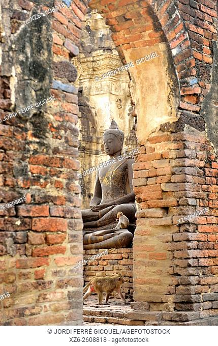 Buddha statue and monkeys at Prang Sam Yot temple, Lopburi, Thailand, Asia