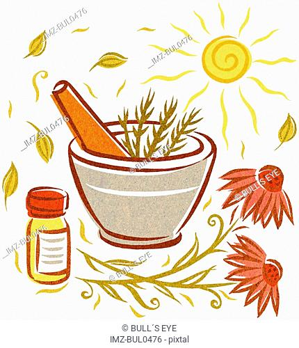 Echinacea and natural herbs in a mortar and pestle