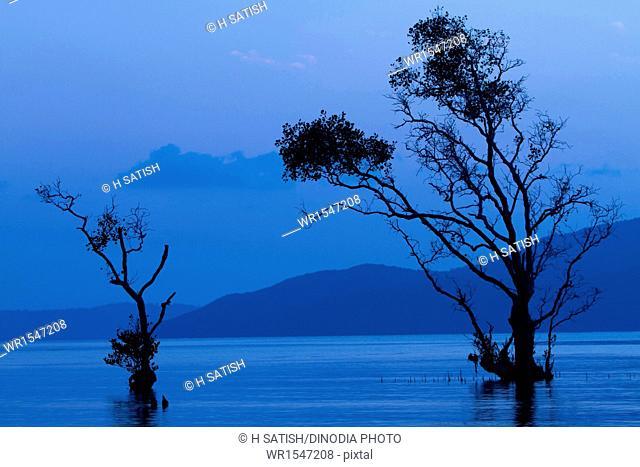 Chidiya tapu near Port blair at Andaman island India Asia