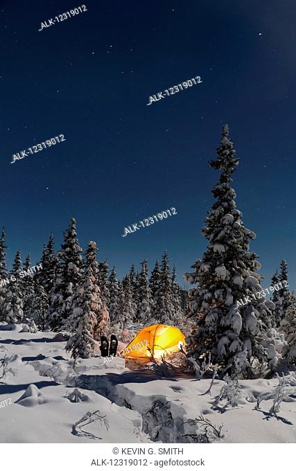 Lit tent among evergreens and a snow covered forest, Gakona, Southcentral Alaska, Winter