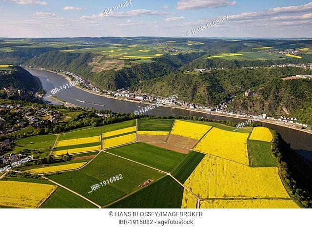 Aerial view, Rhine River, low water, Rhein-Hunsrueck district, Rhineland-Palatinate, Germany, Europe