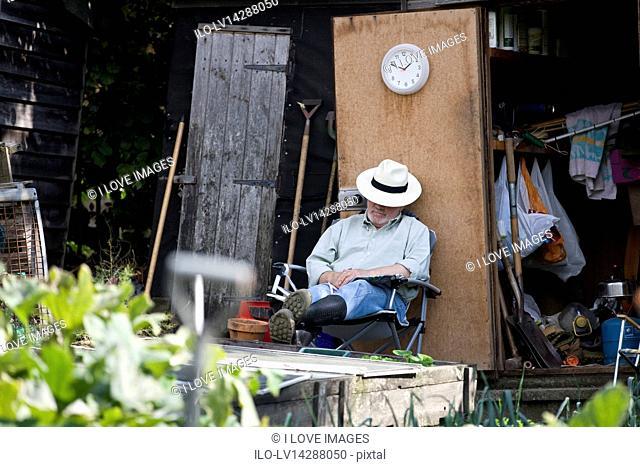 A senior man resting on an allotment