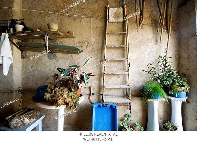 Ladder and gardening tools in shed