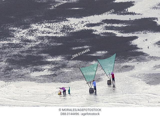 Chine, Chine du Sud, Province de Fujiang, Région de Xiapu,, Pêcheurs à pied, pêche de la crevette avec filet / China, Fujiang Province, Xiapu County