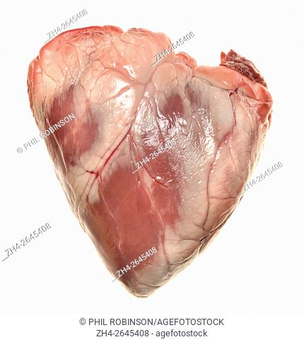 Lamb's heart bought from a supermarket