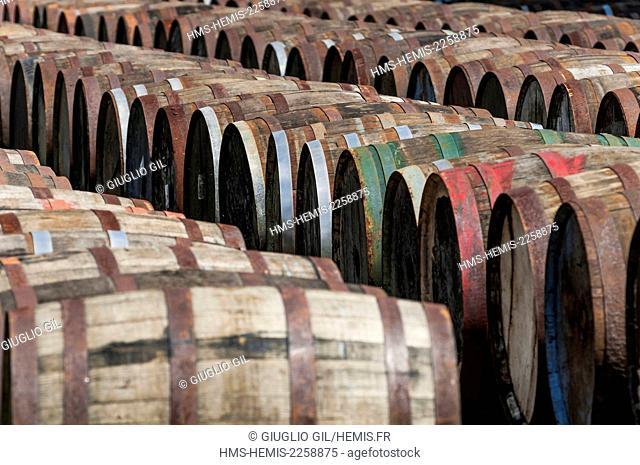 Cuba, Mayabeque province, San Jose Del Las Lajas, Havana Club rum government distillery, rum barrels