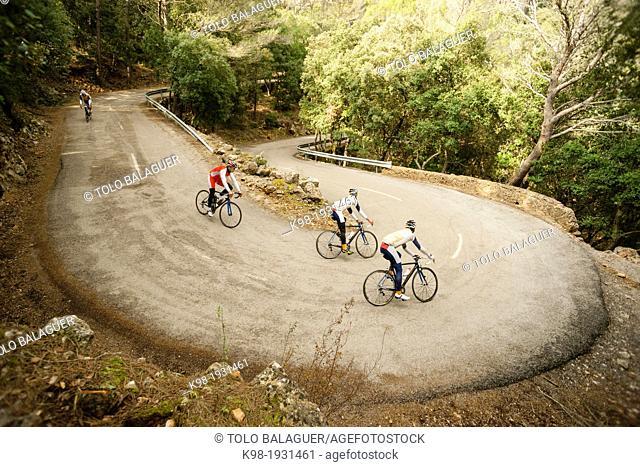 cyclists descending the hill of Honor, Bunyola-Orient Road, Tramuntana, mallorca, Balearic Islands, Spain, Europe