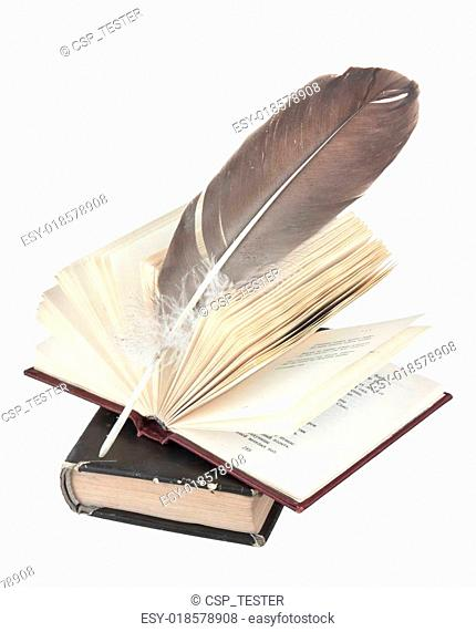 stack of books and quill