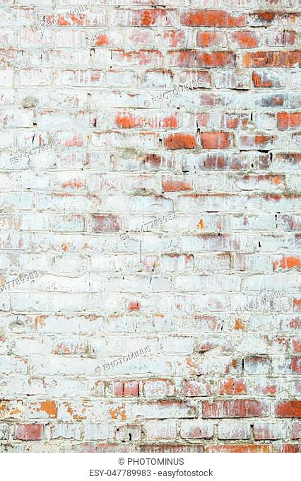 Poorly painted wall of damaged red brick with white paint, texture
