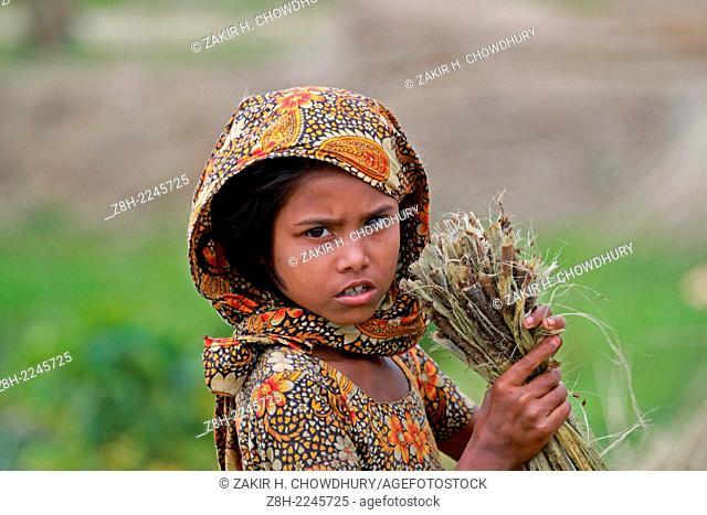jute processing in Bangladesh