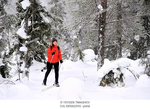 Young woman nordic walking through snow covered forest, Posio, Lapland, Finland