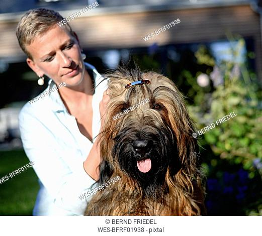 Portrait of dog with hair clip with owner in the background