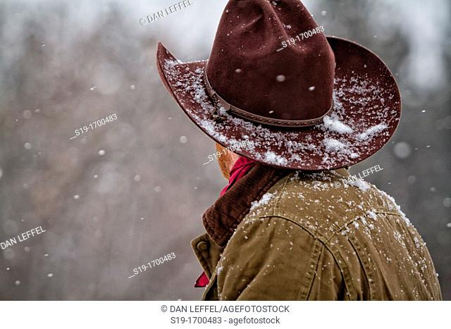 Snow coming down on cowboy