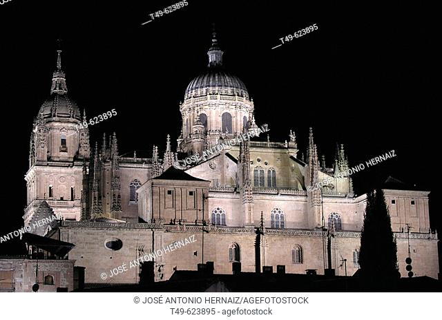 Night view. Cathedral. Salamanca. Spain